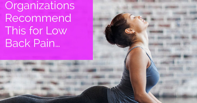 Top Healthcare Organizations Recommend This for Low Back Pain… image